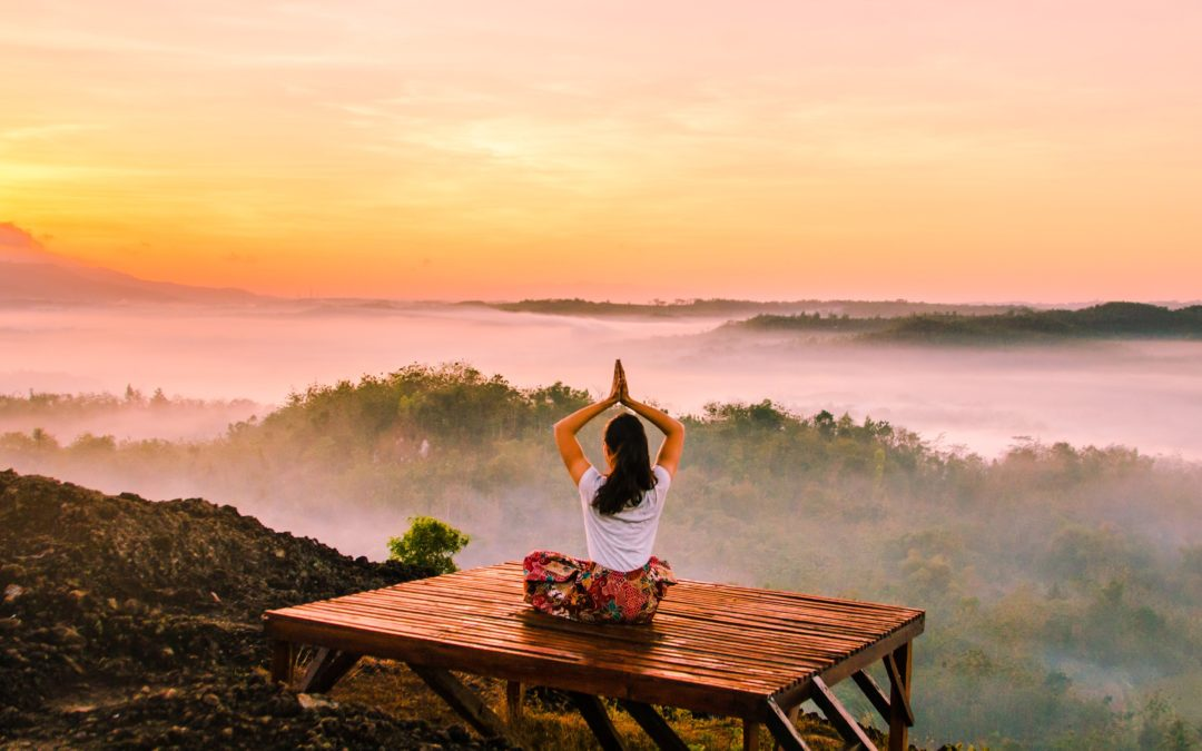 Meditation and Learning to Pause